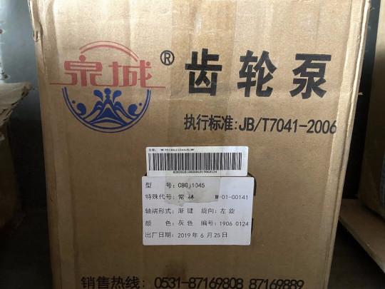 Насос гидравлический CBGJ1045 W-01-00141 CHANGLIN